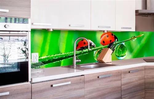 Samolepiace tapety za kuchynskú linku, rozmer 260 cm x 60 cm, lienka, DIMEX KI-260-015
