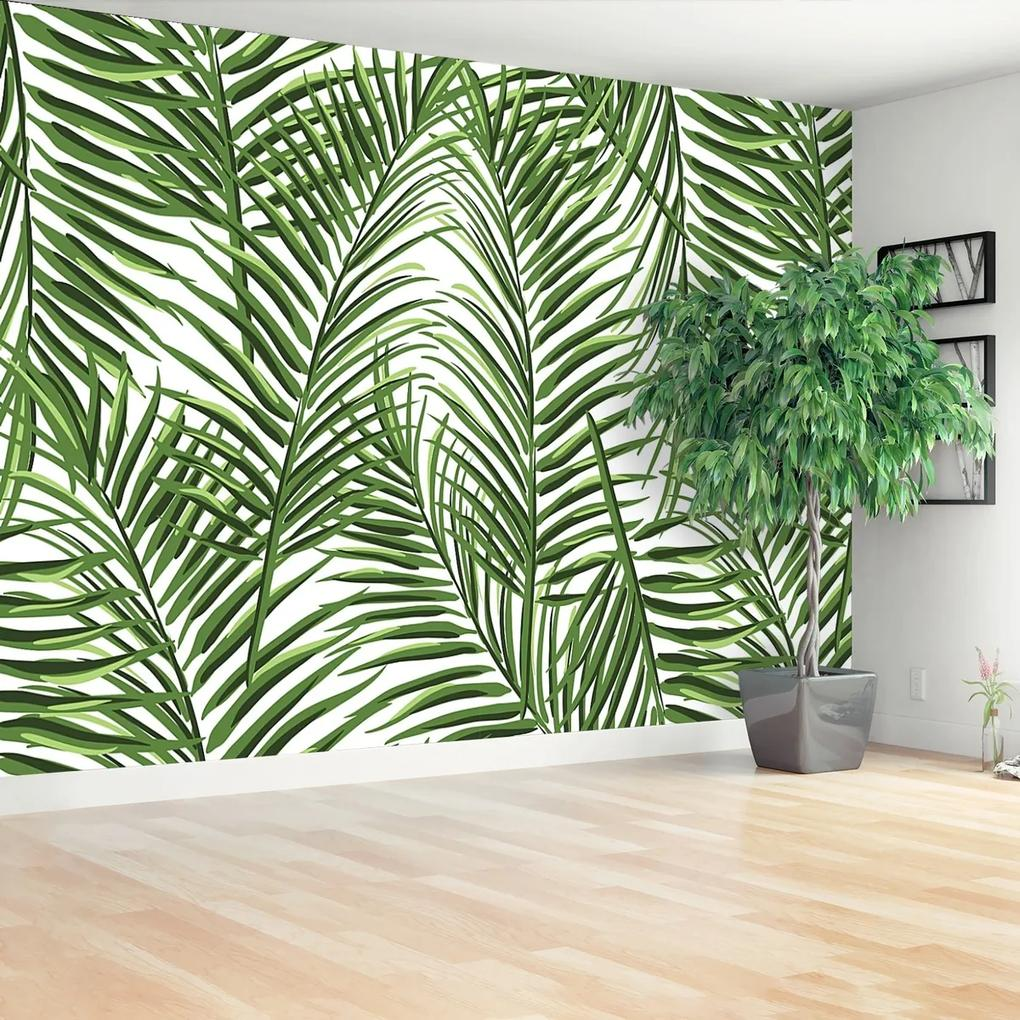 Fototapeta palmové listy