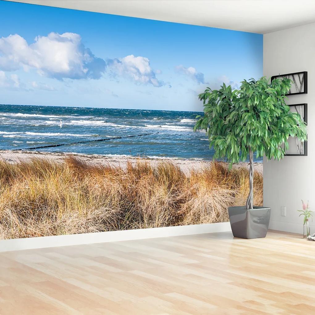 Fototapeta Písečné duny