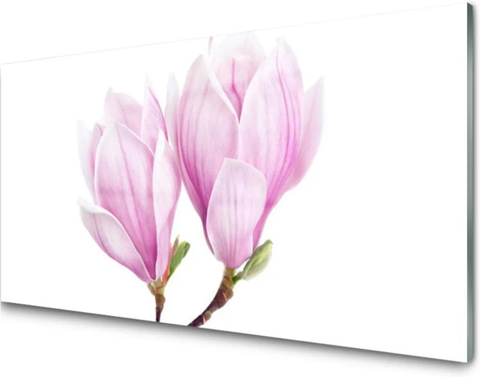 Sklenený obklad Do kuchyne Kvet Rastlina Príroda