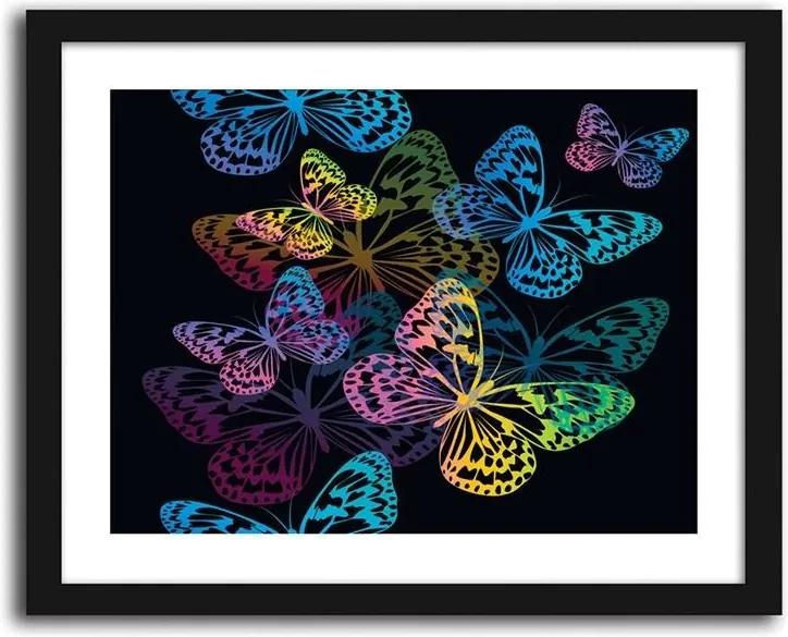 CARO Obraz v ráme - Butterflies 40x30 cm