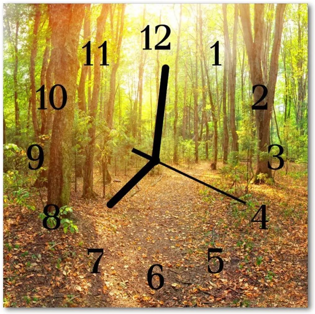 Skleněné hodiny čtvercové Lesní silnice