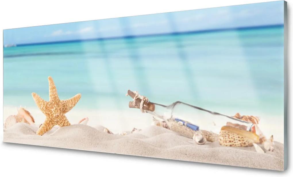 Skleněný obraz Hviezdice Mušle Pláž