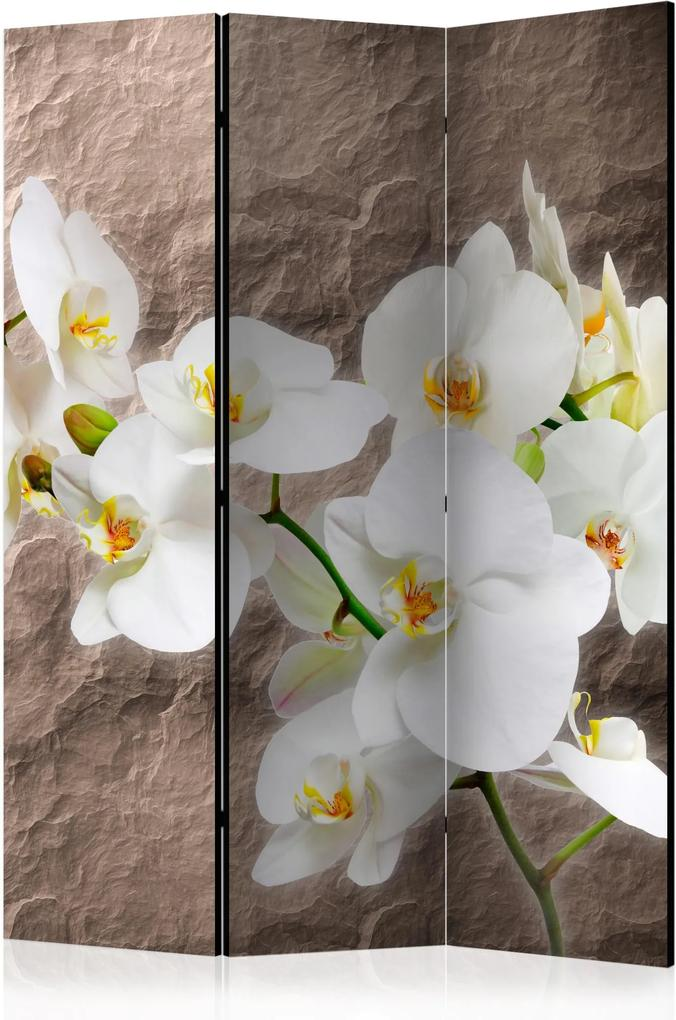 Paraván - Impeccability of the Orchid [Room Dividers] 135x172
