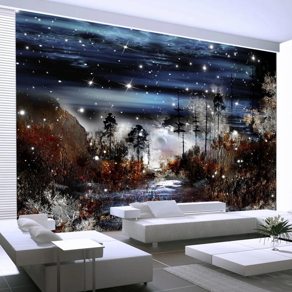 Fototapeta - Night in the forest 200x140