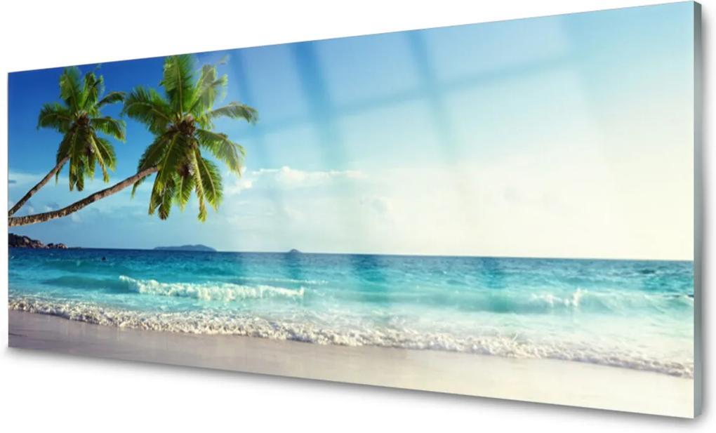 Skleněný obraz More Pláž Palma Krajina