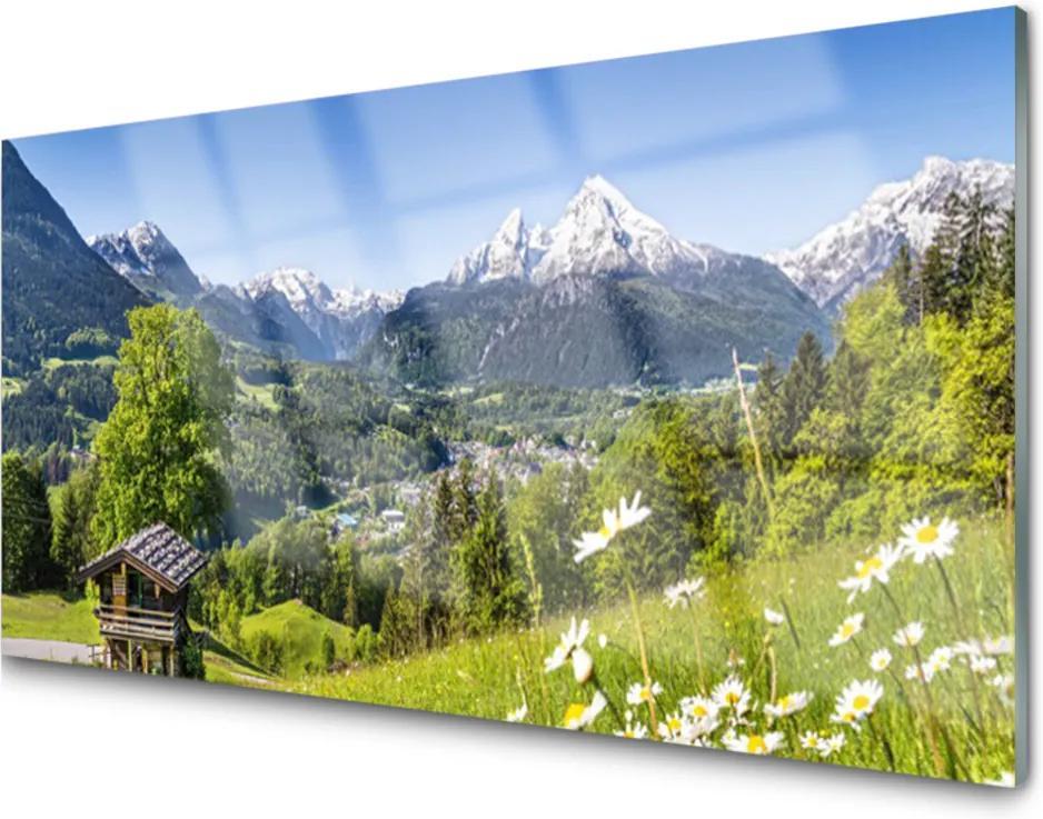 Akrylové obraz Skleněný hora pole příroda