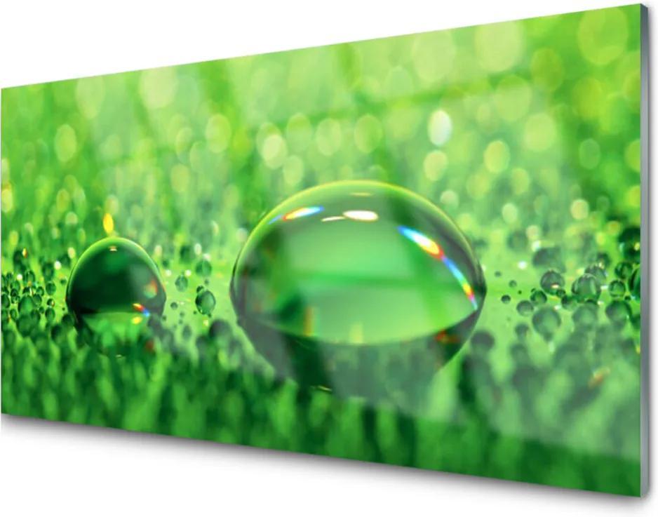 Obraz na akrylátovom skle Sklenený Vodopád Príroda