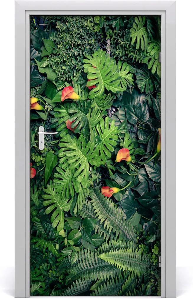 Fototapeta na dveře Tropické rostliny