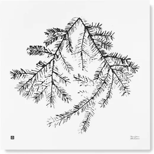 Plagát Spruce Branch 50x50 Teemu Järvi