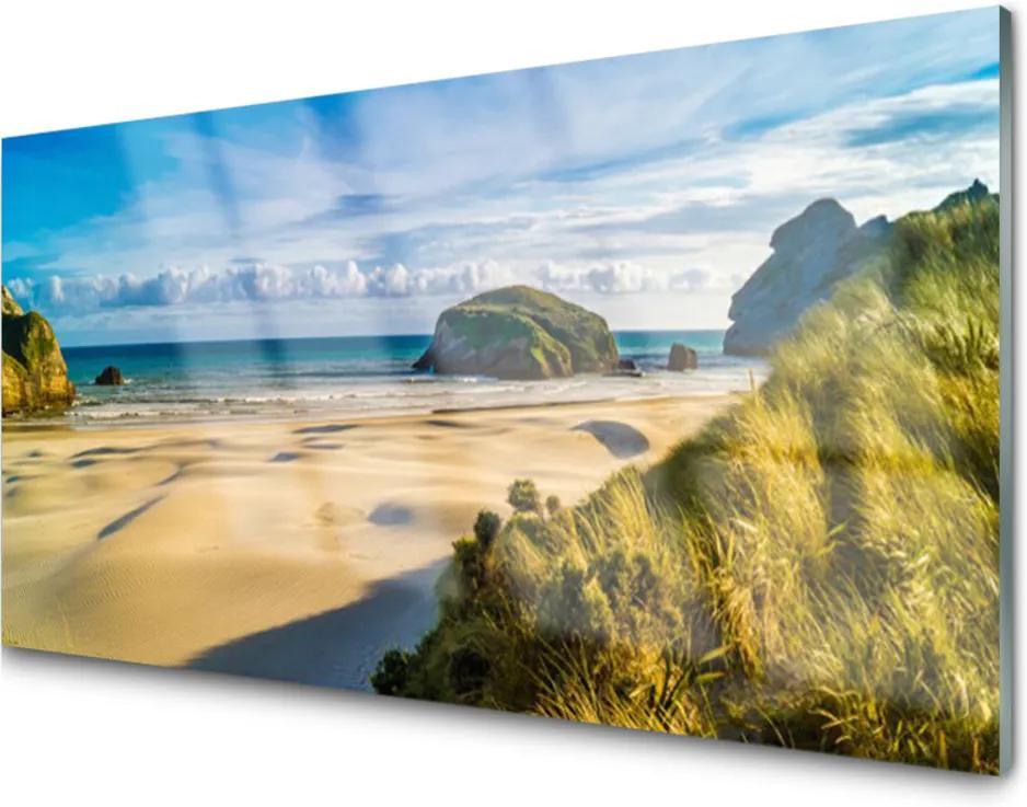 Skleněný obraz Pláž Kamene Krajina