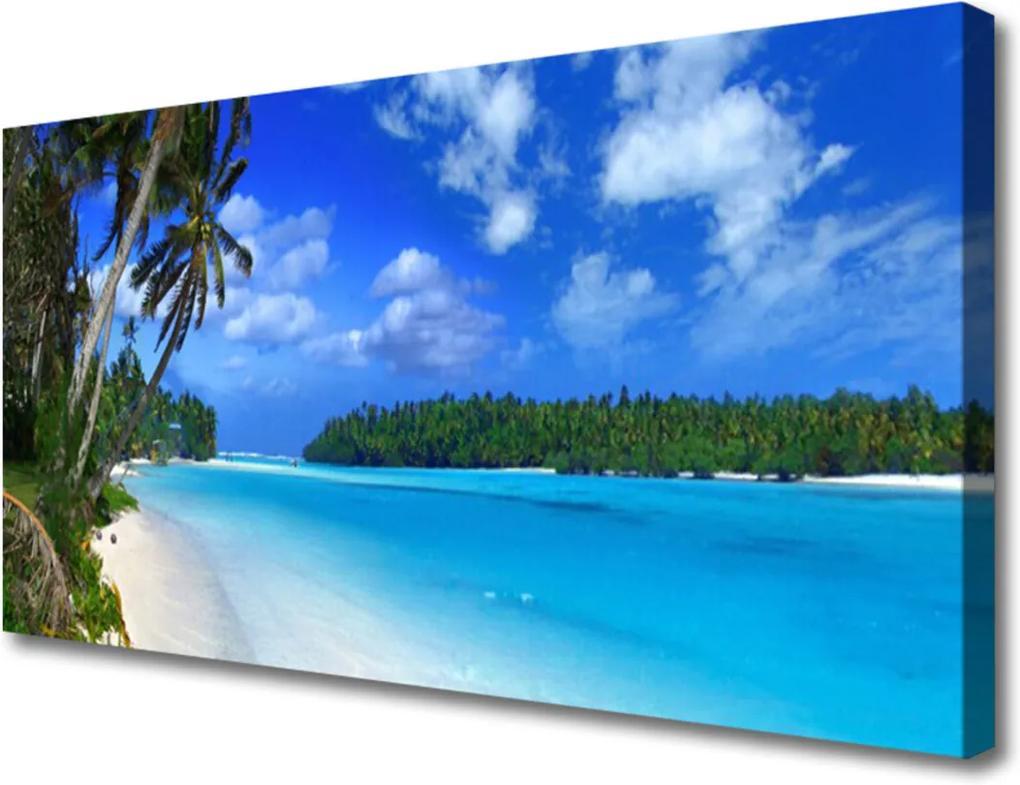 Obraz na plátně Pláž palmy moře krajina