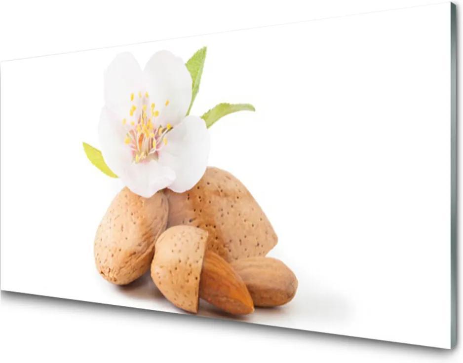 Sklenený obklad Do kuchyne Kvet Pistácie Príroda