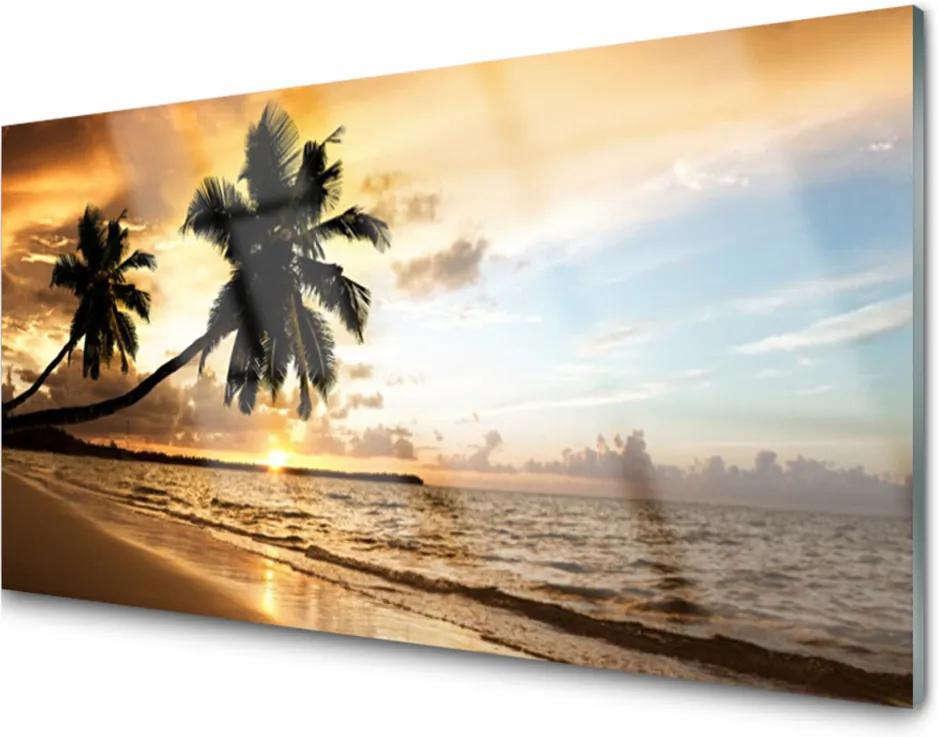 Obraz plexi Palma Stromy Pláž Krajina