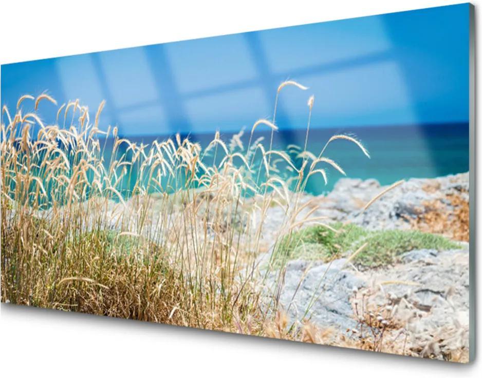 Obraz na akrylátovom skle Sklenený Pláž Príroda
