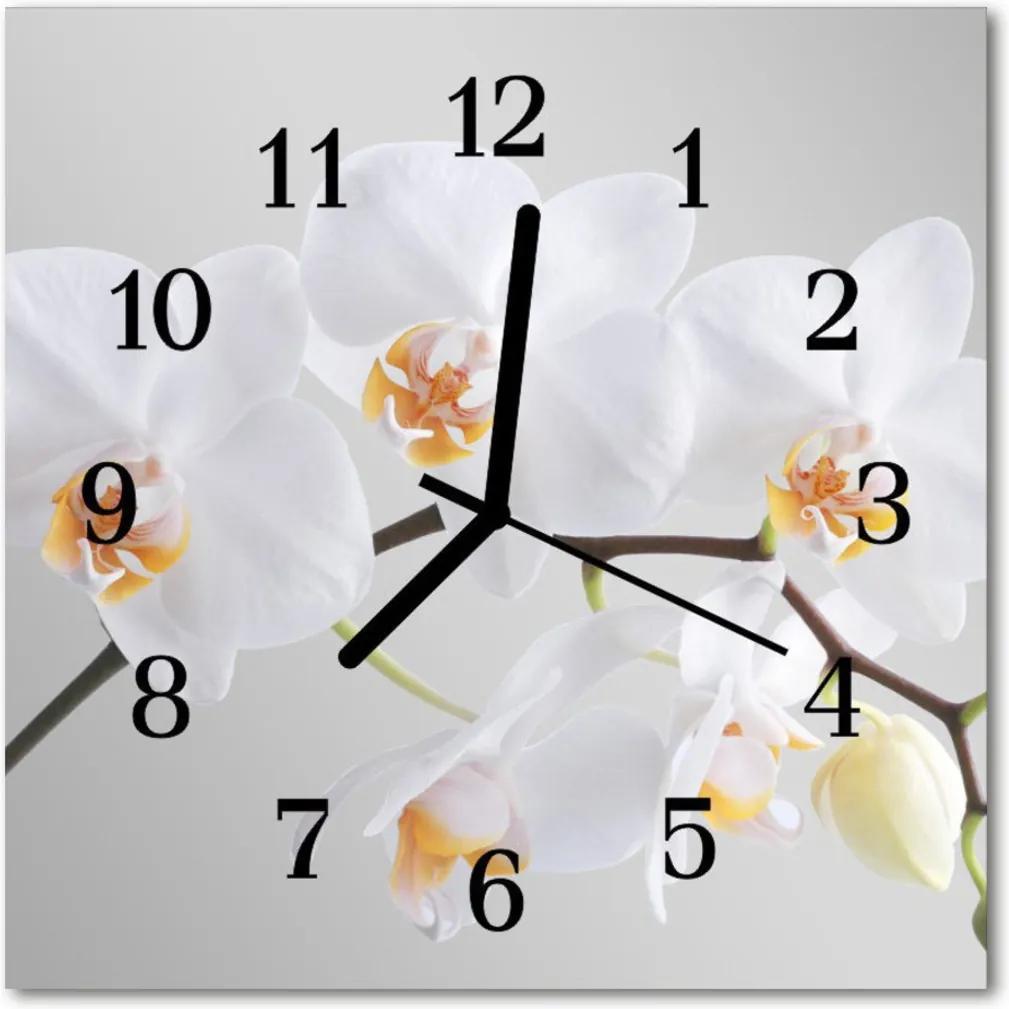 Sklenené hodiny štvorcové  orchidea