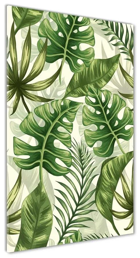 Foto obraz akrylový Tropické listy pl-oa-70x140-f-91705577