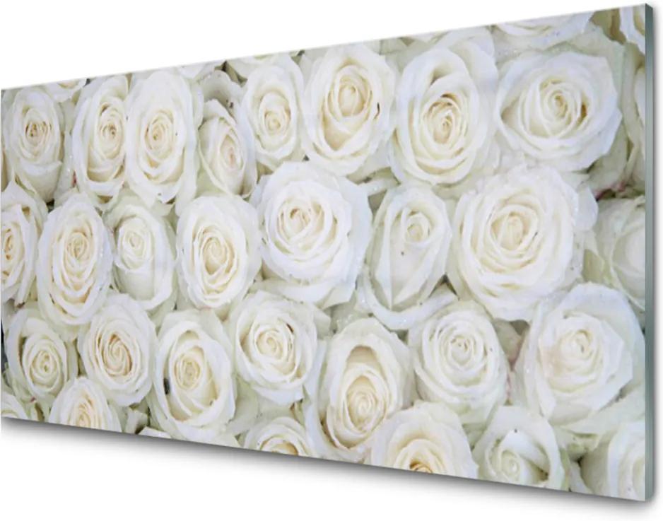 Akrylové obraz Růže květiny rostlina