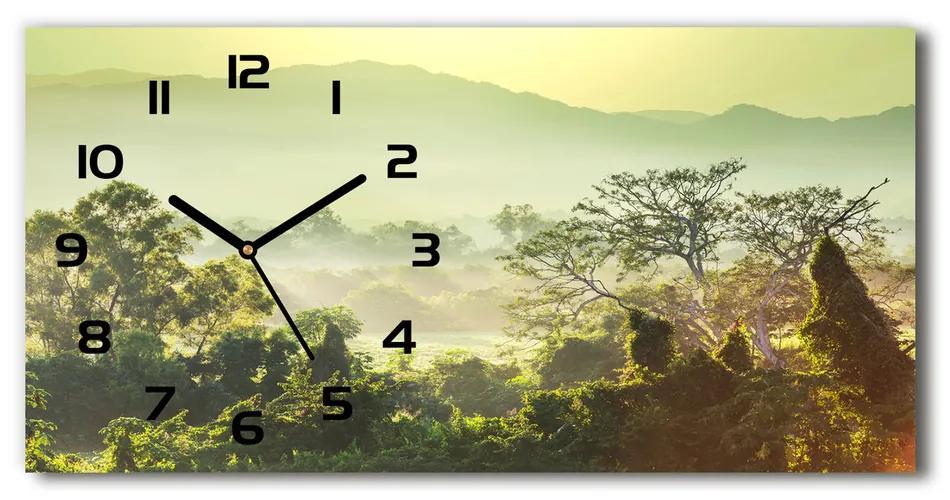 Moderné sklenené hodiny na stenu Džungľa pl_zsp_60x30_f_66007355