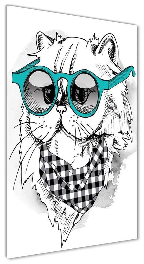 Foto obraz akrylové sklo Kocúr v okuliaroch pl-oa-70x140-f-121703839