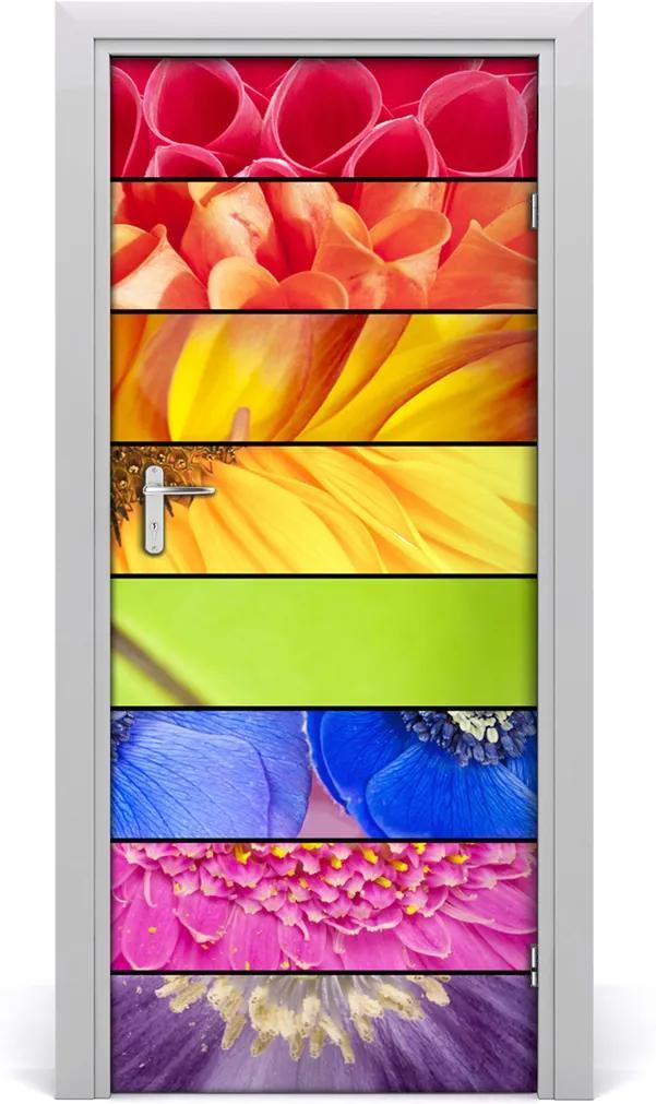 Fototapeta samolepící Barevné květiny