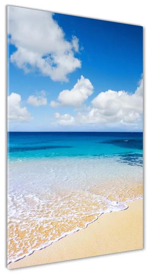 Foto obraz akrylové sklo Tropická pláž pl-oa-70x140-f-11574570