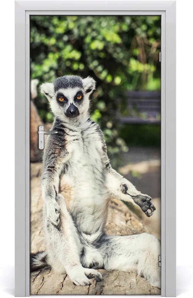 Samolepící fototapeta na dveře Lemur