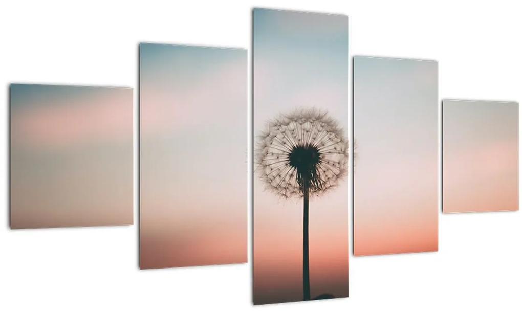 Obraz - Držím ťa, púpava (125x70 cm), 40 ďalších rozmerov