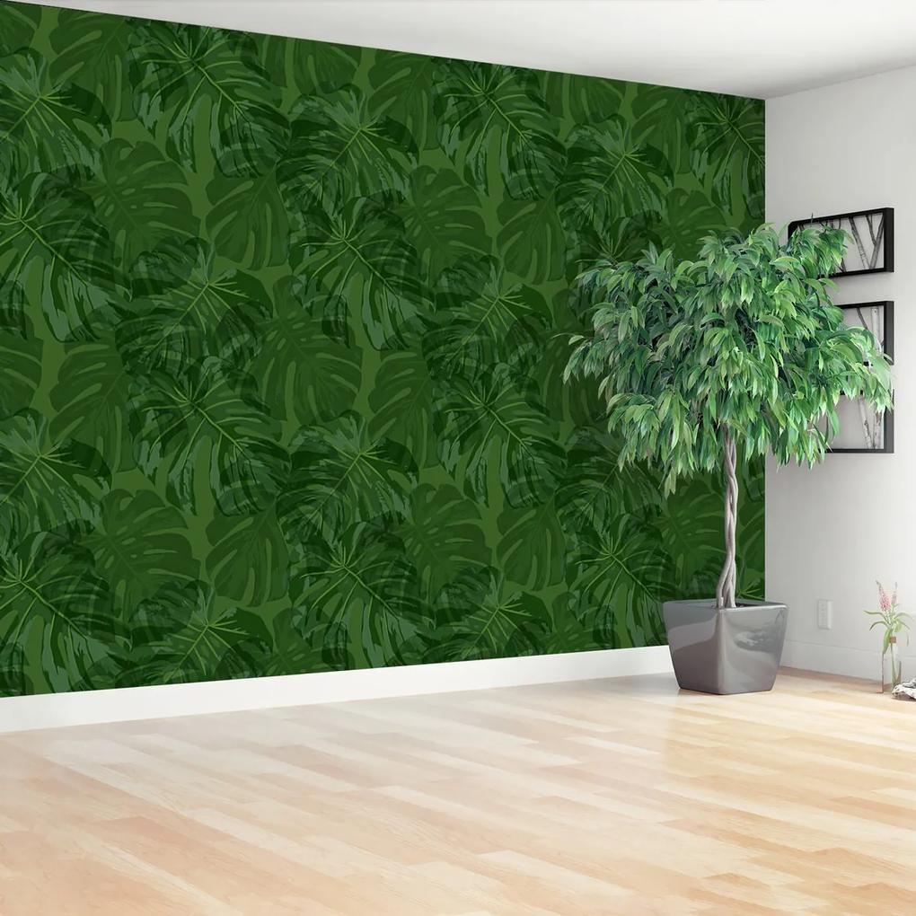 Fototapeta Tropické rostliny