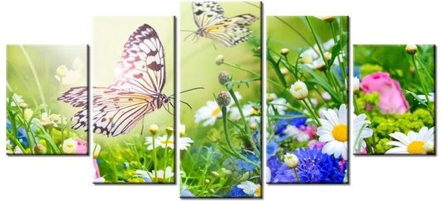 Tlačený obraz Motýle a kvety v krásnej záhrade 150x70cm 2220A_5B