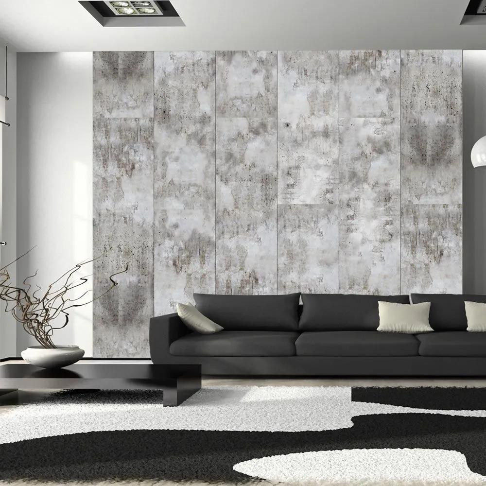 Fototapeta - Gray shadows 50x1000