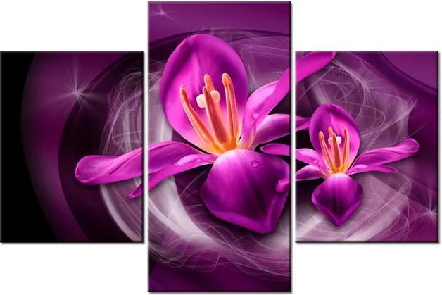 Tlačený obraz Ružové vesmírne kvety – Jakub Banas 90x60cm 3576A_3B