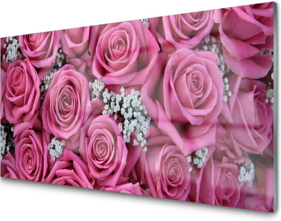 Obraz na akrylátovom skle Ruže Kvety Rastlina