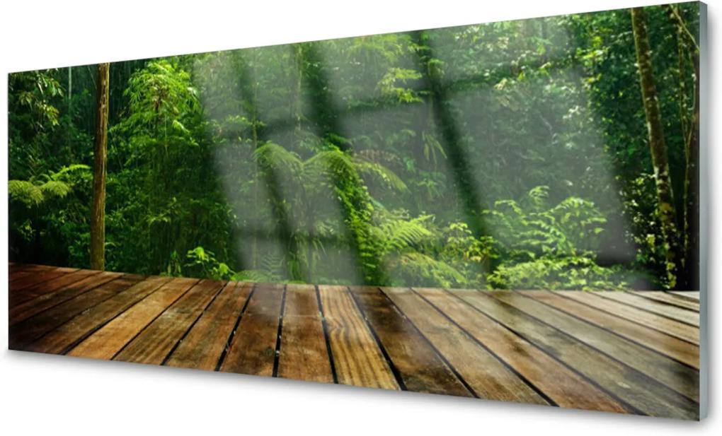 Akrylové obraz Skleněný les příroda