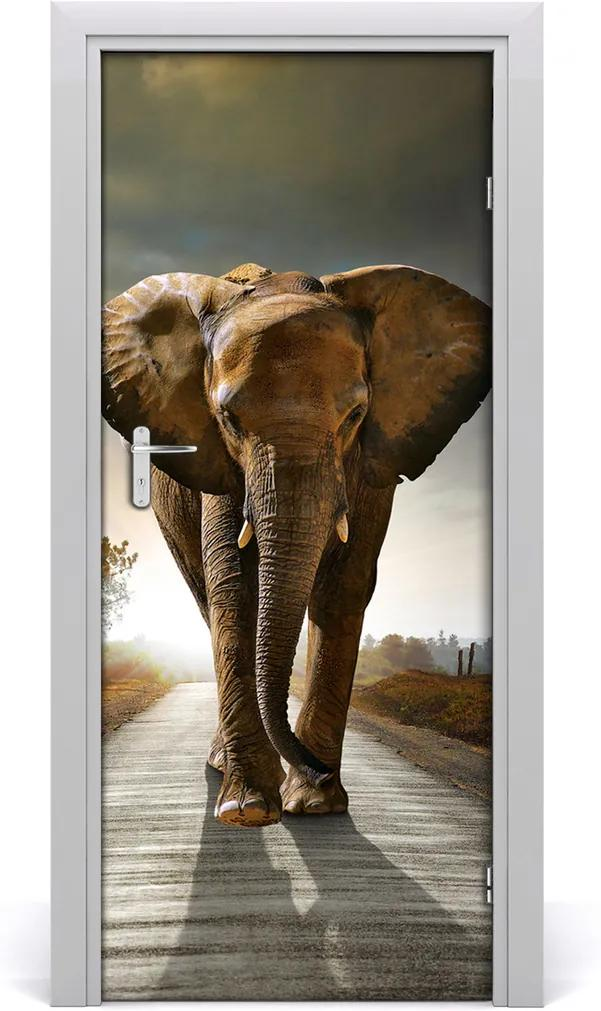 Samolepící fototapeta na dveře Chodící slon