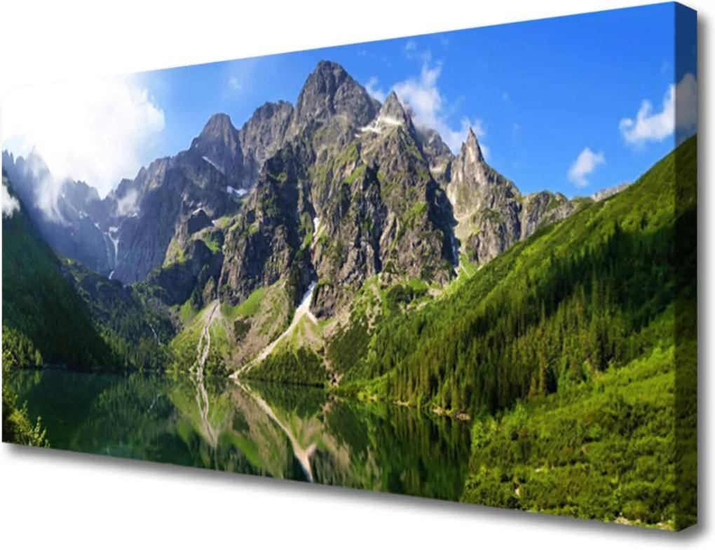 Obraz Canvas Tatry hory mořské oko les