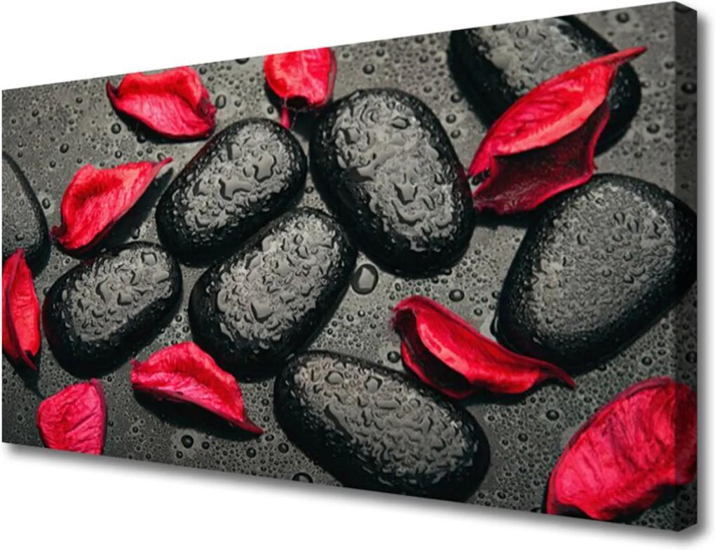 Obraz Canvas Plátky kameny umění