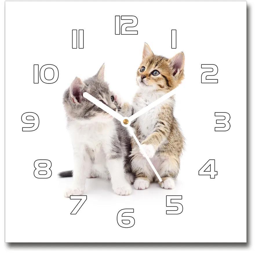 Sklenené hodiny štvorec Dva malá mačiatka pl_zsk_30x30_f_120060855