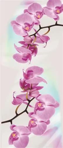 Vliesové fototapety, rozmer 91 x 211 cm, orchidea, IMPOL TRADE 116VE