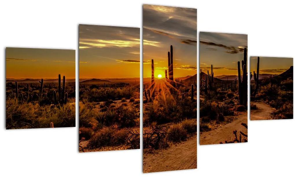 Obraz - Koniec dňa v arizonskej púšti (125x70 cm), 40 ďalších rozmerov