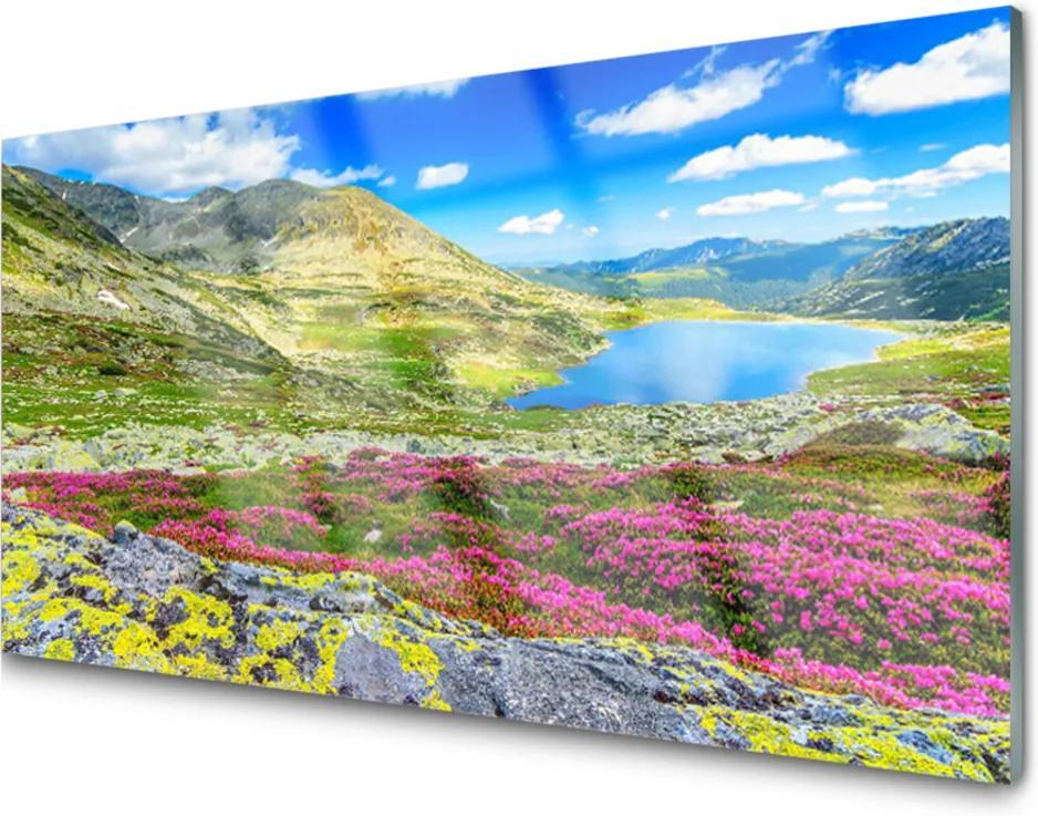 Obraz na skle Hora záliv louka příroda