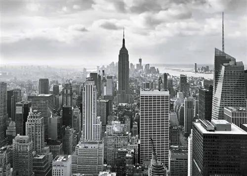 Fototapety, rozmer 368 x 254 cm, New York, Sunny Decor SD323