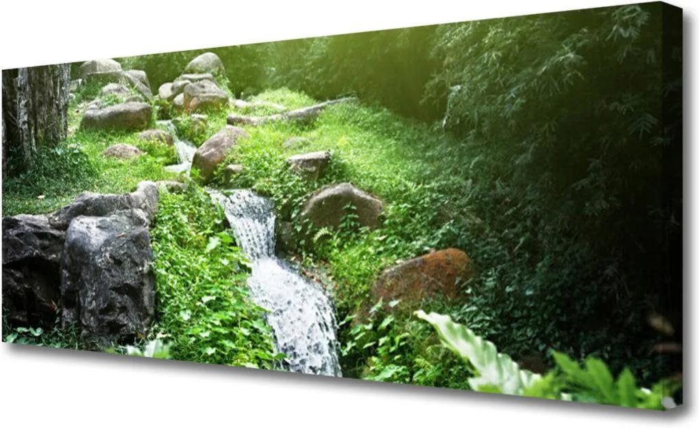 Obraz na plátně Potom Trávy Príroda
