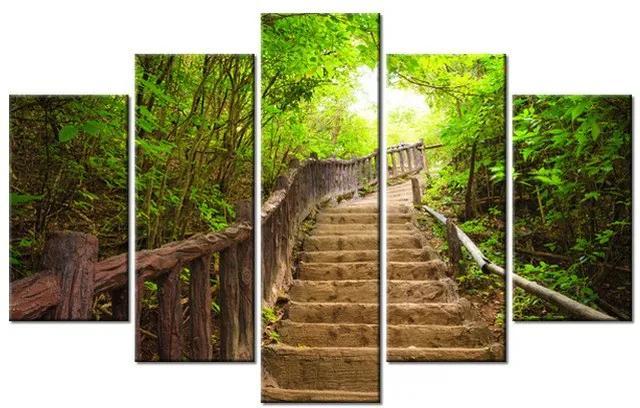 Tlačený obraz Schody v lese v Thajsku 100x63cm 2327A_5D