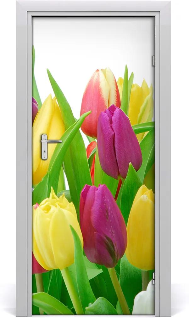 Fototapeta na dvere  kvety tulipány