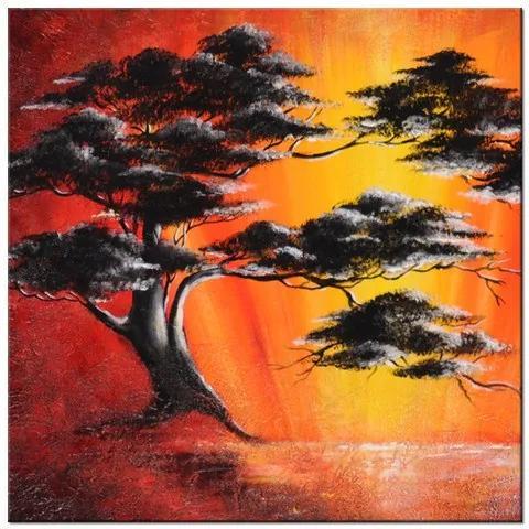 Tlačený obraz Masívny strom pri západe slnka 2513A_1AI