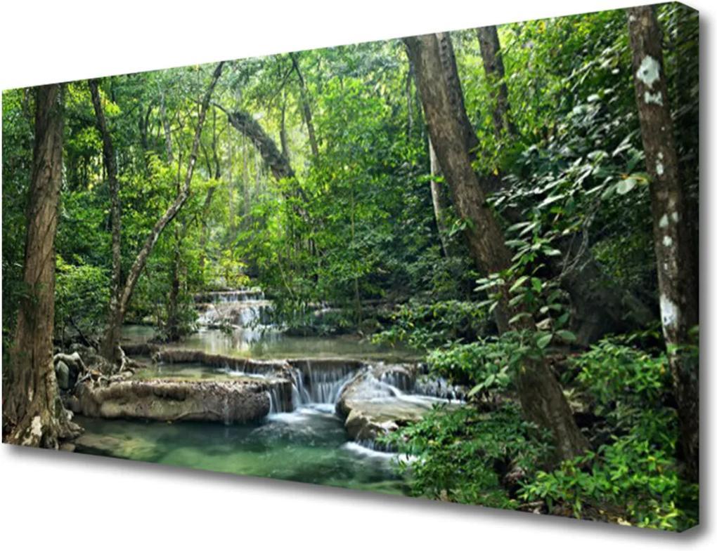 Obraz Canvas Lesní les příroda