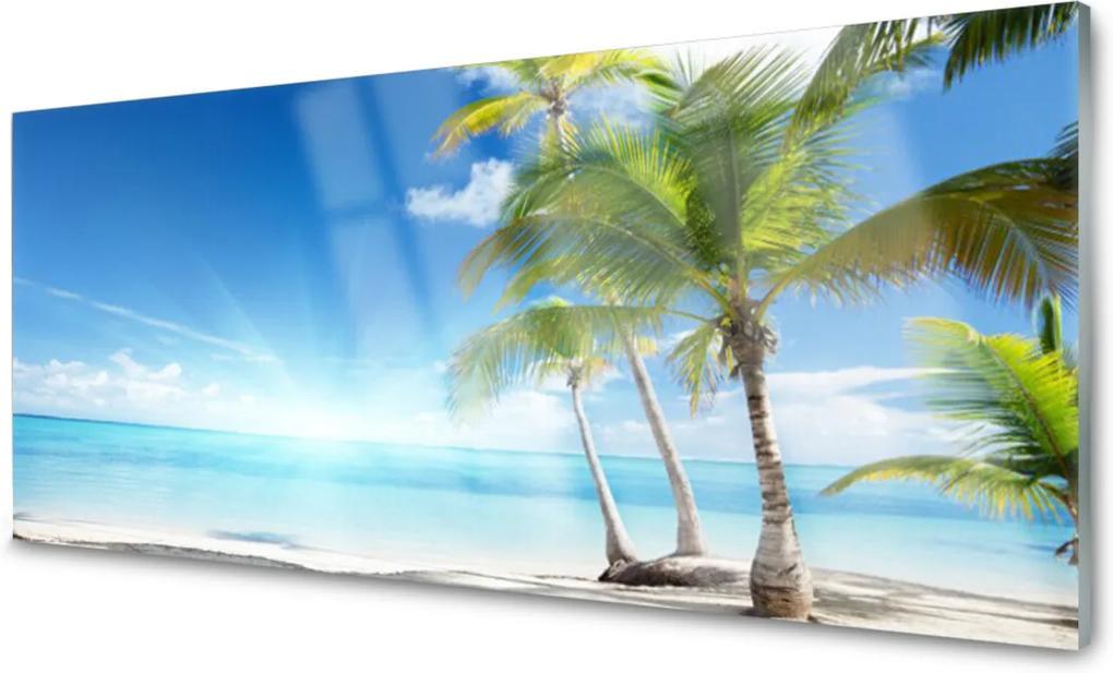 Akrylové obraz Palma strom moře krajina