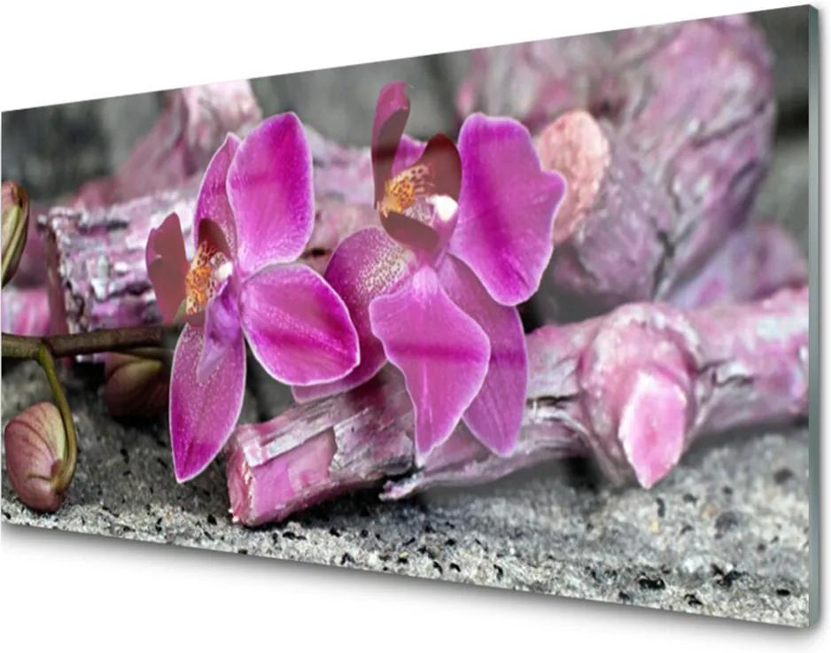 Sklenený obklad Do kuchyne Drevo Kvety Rastlina Príroda