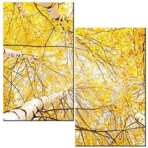 Tlačený obraz Brezy v jeseni 60x60cm 1197A_2A